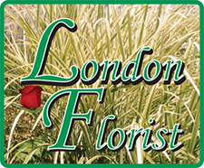 London Florist, Gift Shop & Garden Center